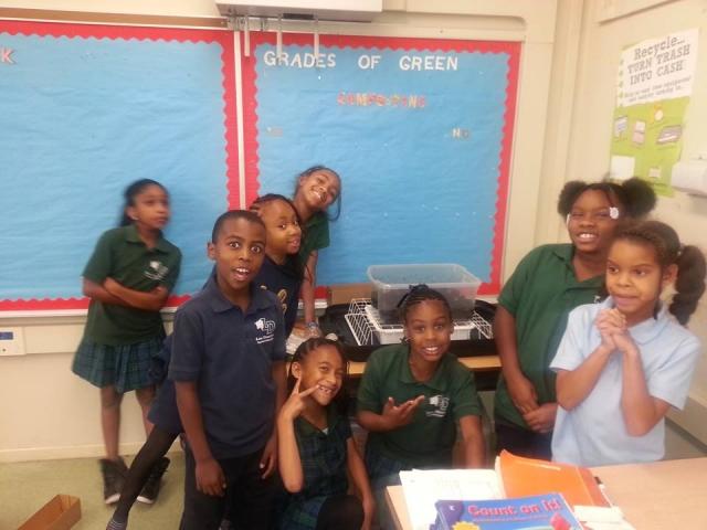 Go Green After School Enrichment Program 171 K12 Academics