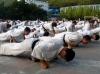 Kanka Academy of Kyokushin Karate