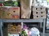 God Provides Food Bank