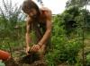 The Fruition Center: Holistic Ecology Community