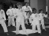 Japan Internatinal Karate Academy