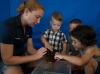 Wildlife Conservation Society Zoos and Aquarium- Camps