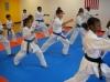 American Shotokan Karate Acdemy