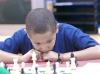 Bay Area Chess