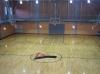 Lynn YMCA School's Out Afterschool