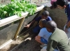 The Patriot's Sanctuary Outdoor Garden Classroom